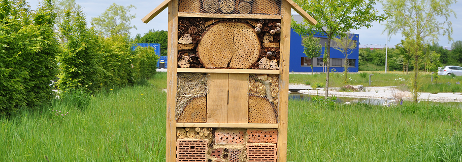 insekten wellnesshotel byodo naturkost gmbh. Black Bedroom Furniture Sets. Home Design Ideas